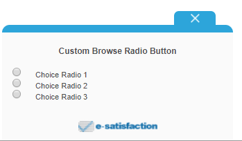 custom_browse_radio_button.PNG
